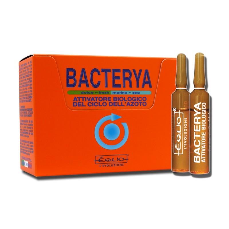 Équo Attivatore di Azoto Bacterya 12 Fiale
