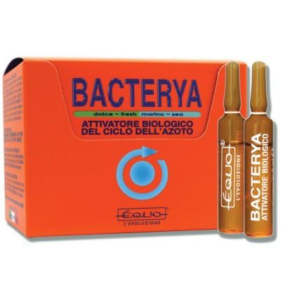 Équo Attivatore di Azoto Bacterya 24 Fiale