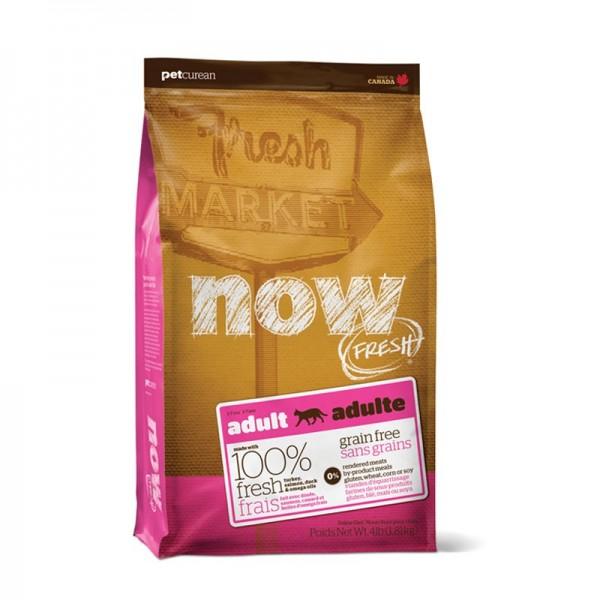 Now Fresh Adult Grain Free per Gatti