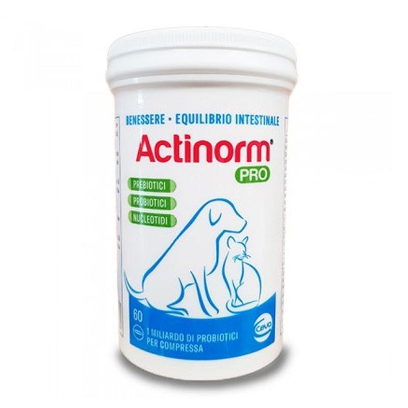 Vetempet Actinorm Pro