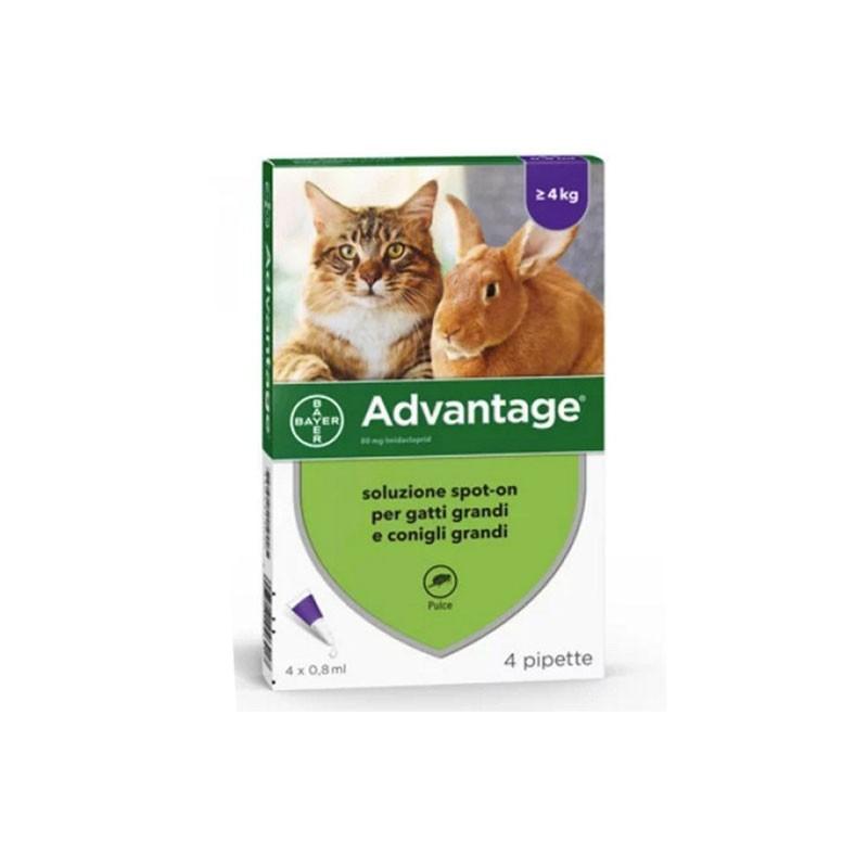Bayer Advantage Spot-On per Gatti, Conigli e Furetti