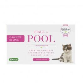 Derbe Fiale di Pool per Gatti
