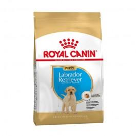 Royal Canin Puppy Labrador Retriever