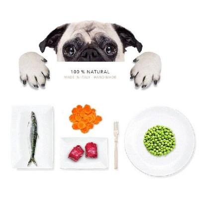 Tasty Pet Biscotti Healthy Organic con Pollo e Zucchine