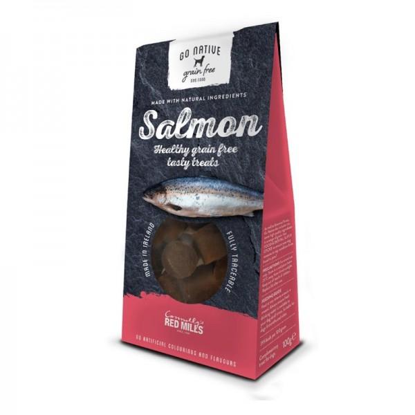 Go Native Snack al Salmone