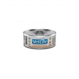 Farmina Vet-Life Feline Formula Convalescence Umido