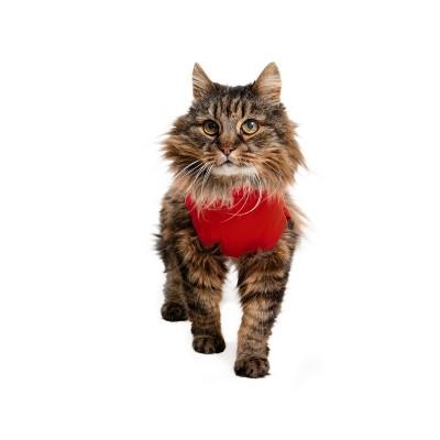 Medical Cat Tutina Post Operatoria Rossa per Gatti