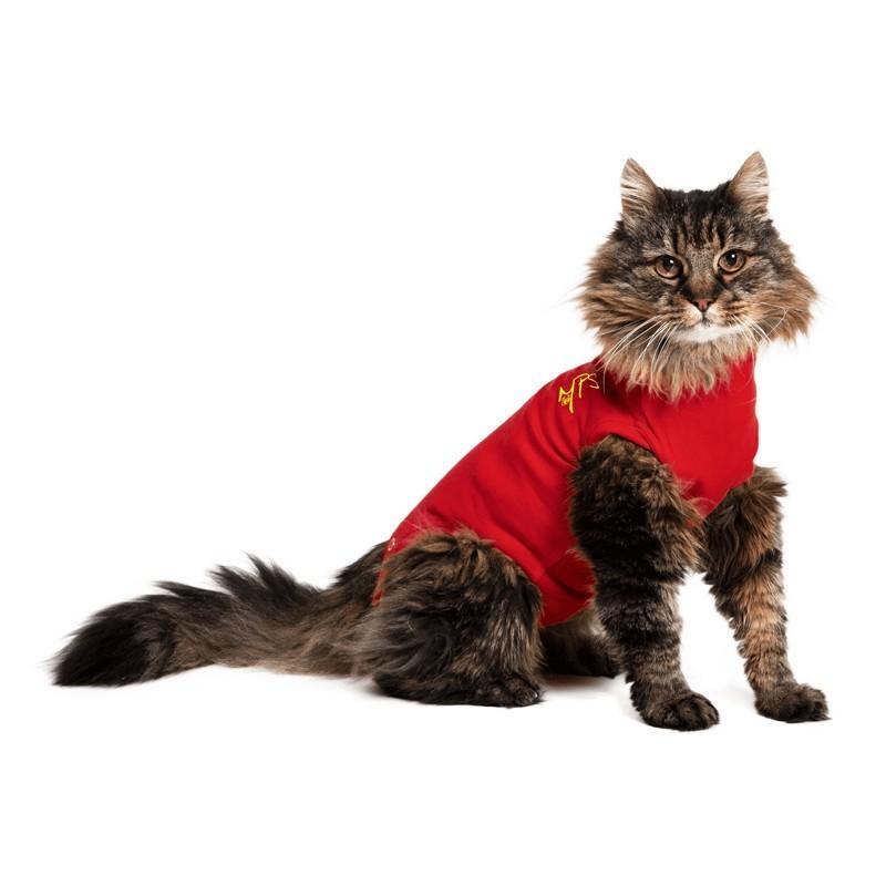 Medical Pet Shirt Cat Tutina Post Operatoria Rossa per Gatti