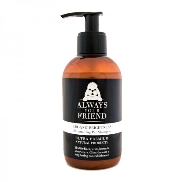 Always Your Friend Shampoo Brillantezza