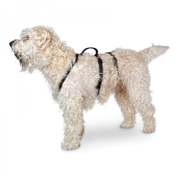 Karlie Pettorina Art Sportiv Safety Nera per Cani