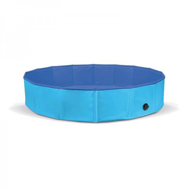 Record Piscina Blu per Cani