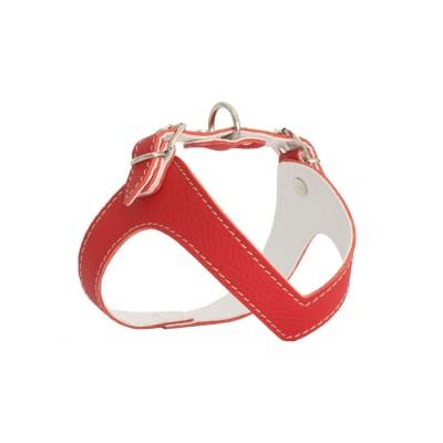 Rich Dog Pettorina Kite Colore Rosso