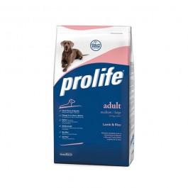 Prolife Medium Large Agnello