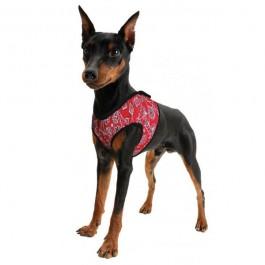 ACK Pettorina Refrigerante Rossa per Cani
