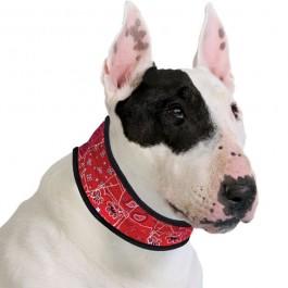 ACK Collare Refrigerante Red Western per Cani