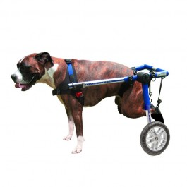 Carrellino per Cani Disabili MEDIUM Blu