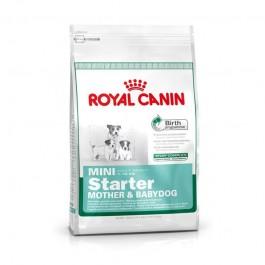Royal Canin Mini Starter Puppy
