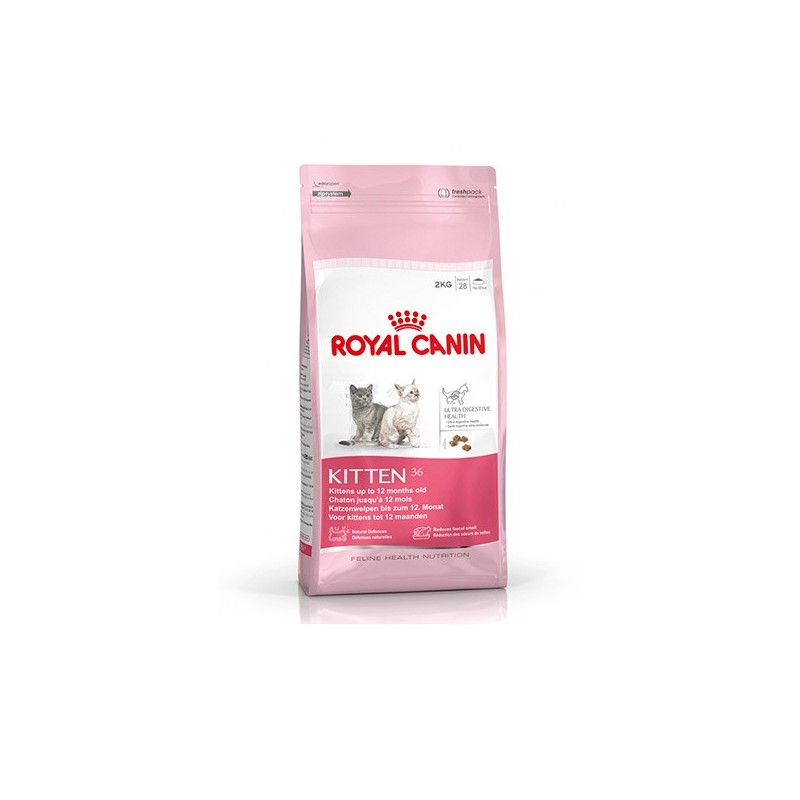 Royal Canin Gatto Kitten 36 Secco