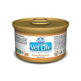 Farmina Vet-Life Convalescence Gatto