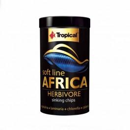 Tropical Africa Herbivore