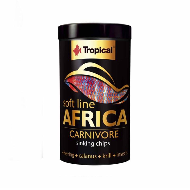 Tropical Africa Carnivore