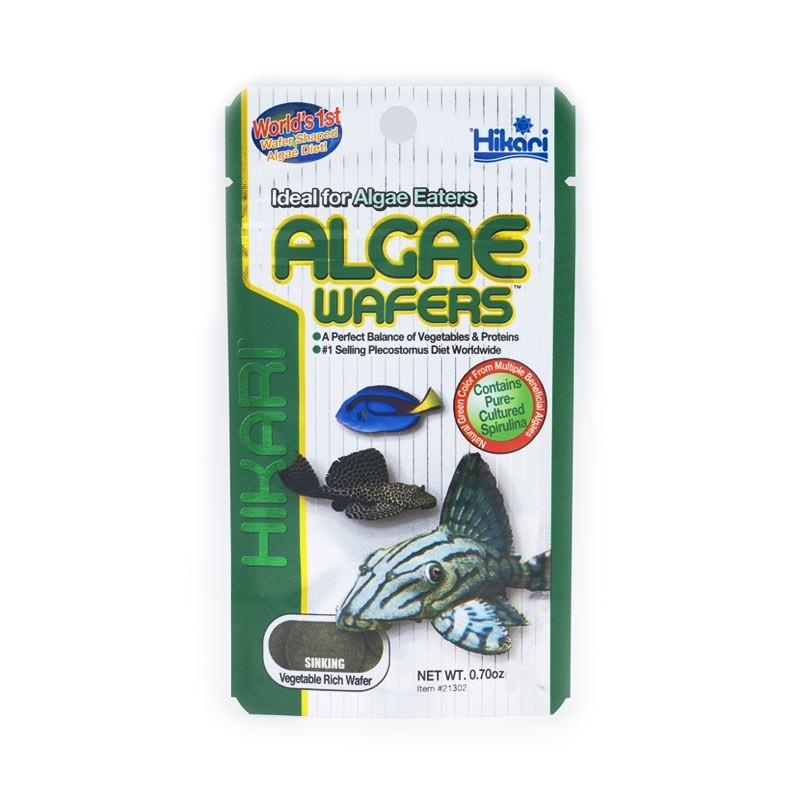 Hikari Micro Pellets Algae Wafers