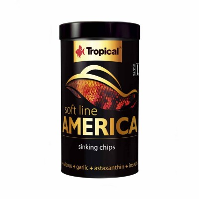 Tropical Soft Line America in Chips