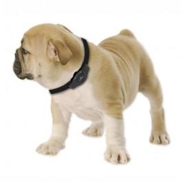 SISTEMA DI LOCALIZZAZIONE EYENIMAL GPS DOG TRACKER