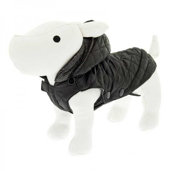 Per Cappotto Pet Shop Ferribiella Mosca Cani Robinson xwqZaafnP1