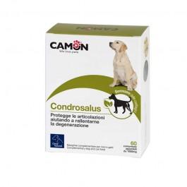 Orme Naturali Condrosalus Care per Cani