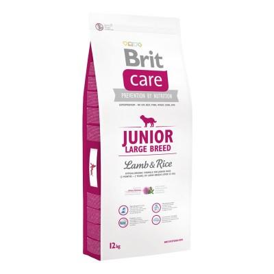 Brit Care Junior Large Breed Agnello e Riso