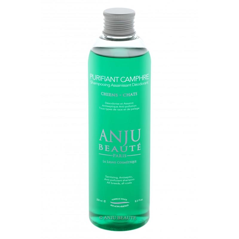 Anju Beauté Shampoo Purificante Purifiant Camphre