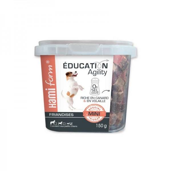 Hamiform Snack Education Agility Mini