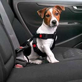 Karlie Imbragatura di Sicurezza per Auto