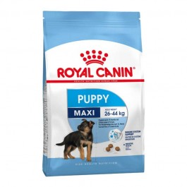 Royal Canin Maxi Junior Secco