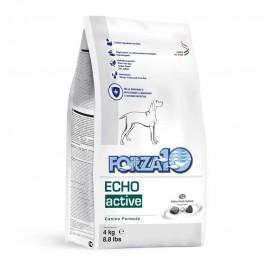 Forza10 Active Line Oto Active