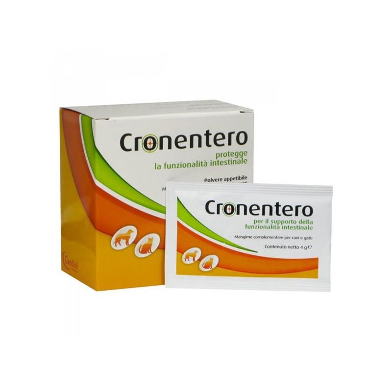 Candioli Cronentero Cane Gatto Patologie Intestinali