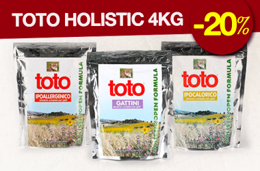 Toto Holistic Gatto