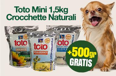 Toto Mini & Toy