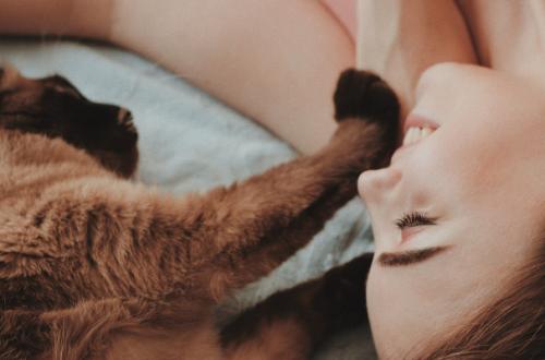 Gatti affettuosi, una ricerca dimostra che non sono affatto una eccezione thumb