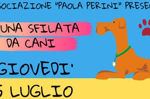 AL Cala Fo.Ma. i cani sfilano per beneficenza con l'Associazione Paola Perini thumb