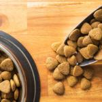 quali sono le migliori crocchette per cane italiane