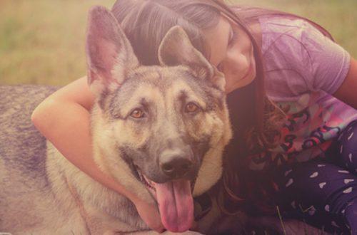 Cani e gatti: cosa possono imparare i bambini dai loro amici a 4 zampe? thumb