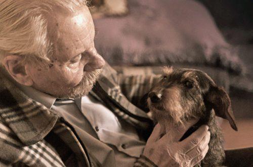 Anziani e animali: così la compagnia dei pet migliora la loro salute thumb