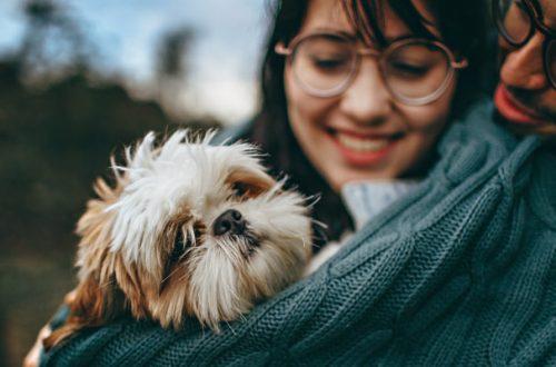 Relazione uomo-animale, un mutuo scambio di benessere thumb