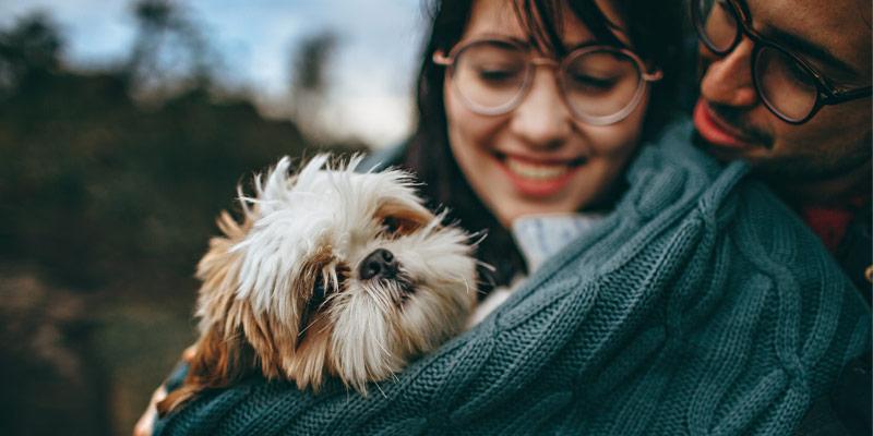 Relazione uomo-animale, un mutuo scambio di benessere cover