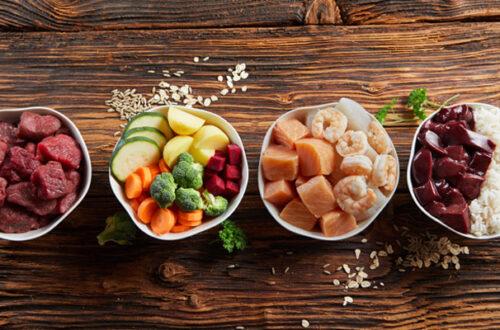 Dieta Barf: i pro e i contro rispetto al cibo secco thumb