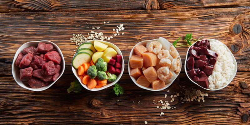 Dieta Barf: i pro e i contro rispetto al cibo secco cover