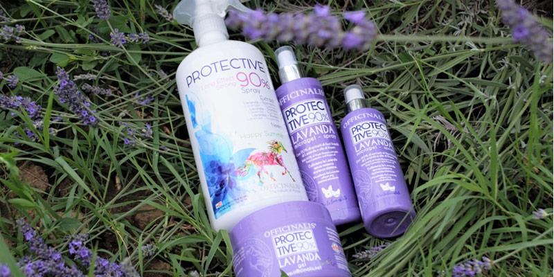 Come proteggere cani o gatti utilizzando le erbe officinali? cover