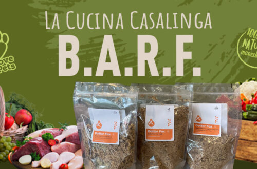 La Dieta Barf Made In Italy di Dottor Fox thumb